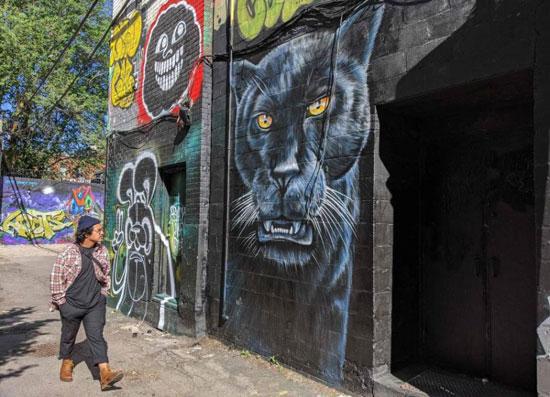 جداريات في تورونتو ضد العنصرية (15)