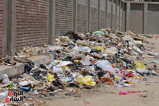 القمامة تحاصر آثر شجرة مريم