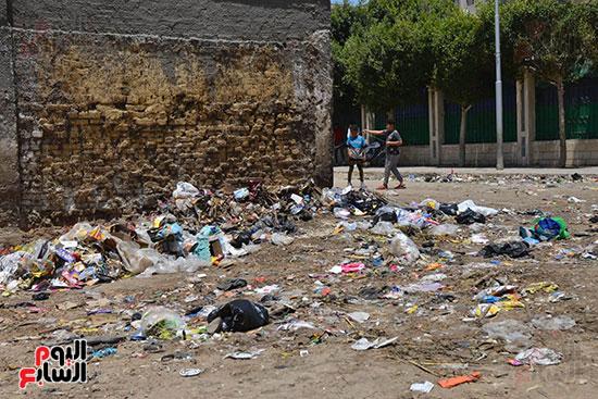 القمامة تحاصر شجرة مريم