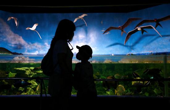 طفل ووالدته بحديقة الحيوان فى مدريد