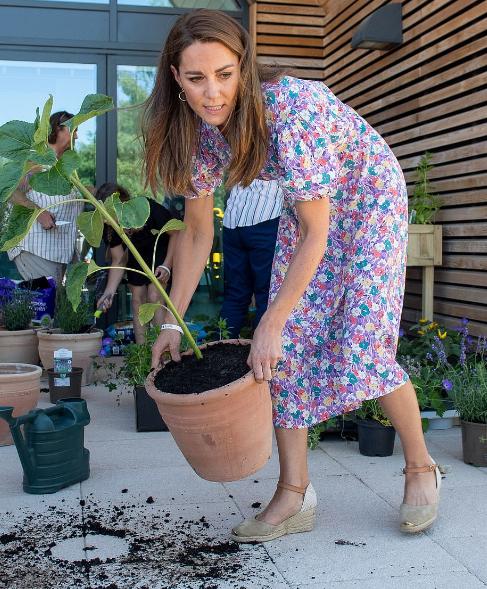 كيت تشارك فى زراعة حديقة