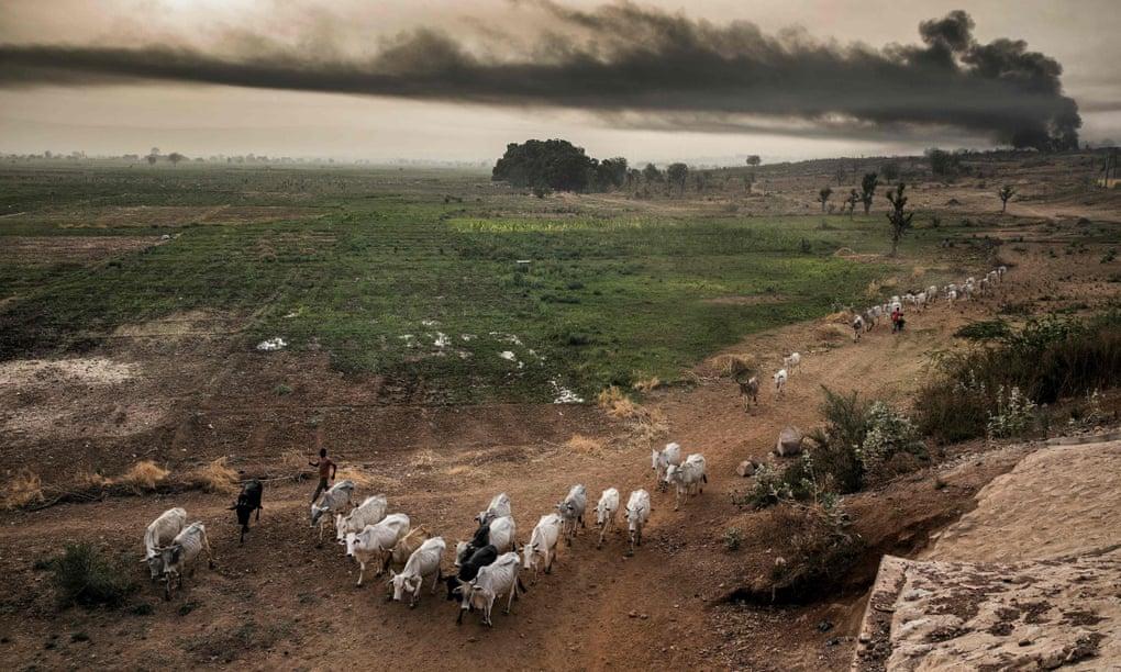 شمال غرب نيجيريا