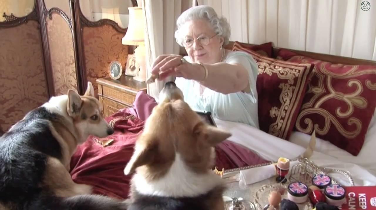 الملكة إليزابيث تطعم الكلاب