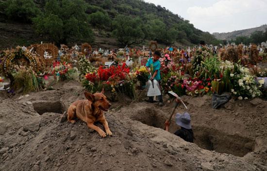 مقبرة لأحد ضحايا الفيروس