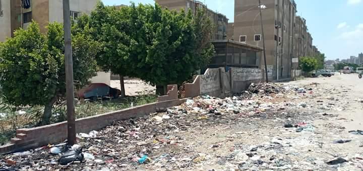 انتشار القمامة (6)