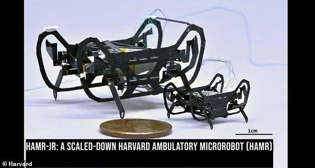 روبوت الصرصار