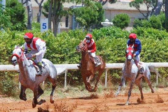 يتنافسون خلال السباق