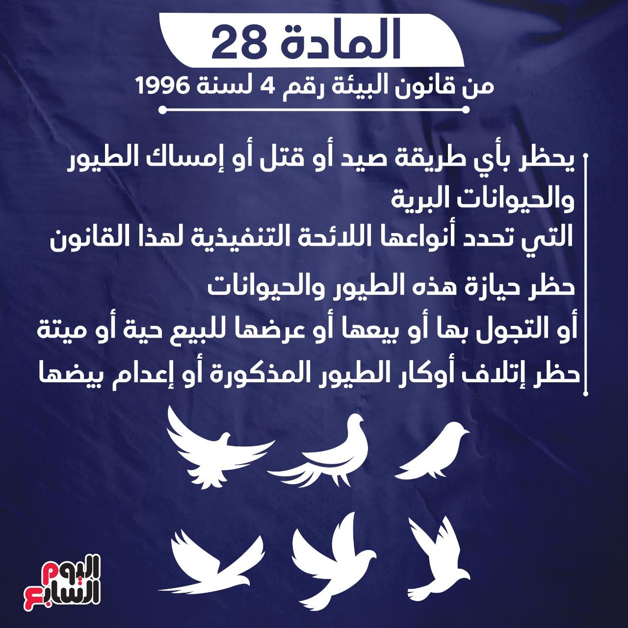 السجن 7 سنوات عقوبة واقعة السحل فى الإسكندرية (5)