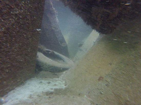 حواجز الامواج أسفل شاطئ النخيل (1)
