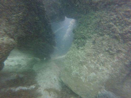 حواجز الامواج أسفل شاطئ النخيل (4)