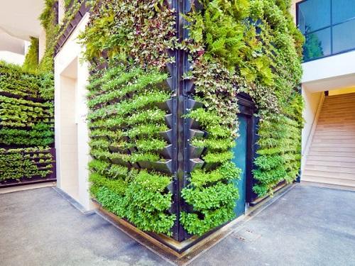 سيتم جلب الطبيعة إلى الداخل عبر الجدران الحية وحدائق الأعشاب