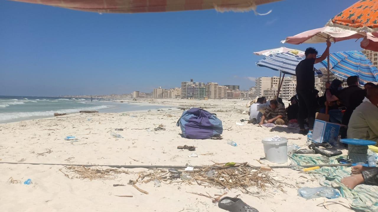 شاطئ النخيل (4)