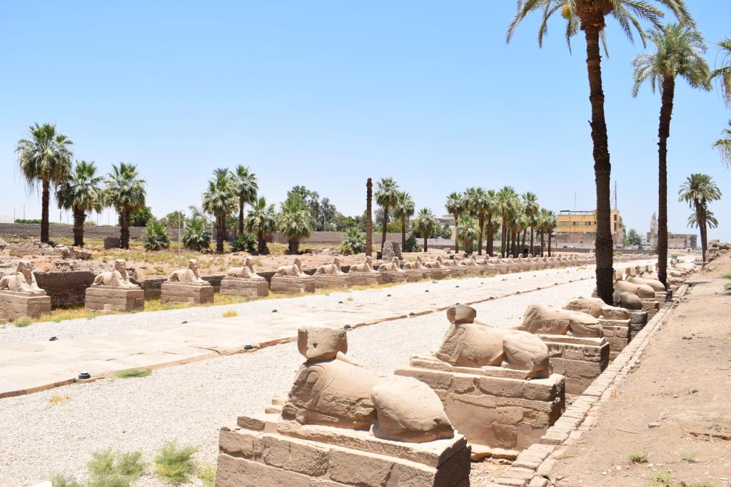 مدير معبد الأقصر فى حوار خاص لـاليوم السابع  (20)