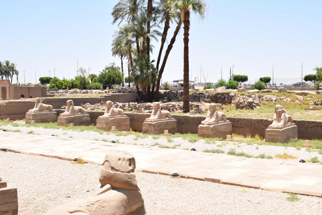 مدير معبد الأقصر فى حوار خاص لـاليوم السابع  (23)