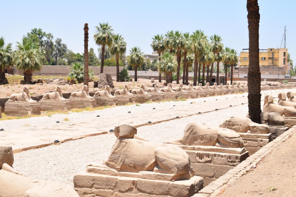 مدير معبد الأقصر فى حوار خاص لـاليوم السابع  (16)