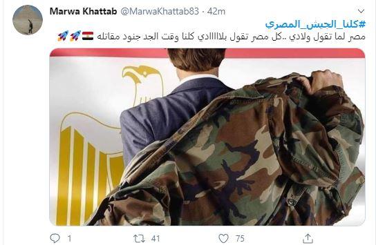 هاشتاج كلنا الجيش المصرى  (6)