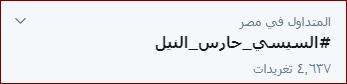 السيسى حارس النيل هاشتاج عبر تويتر