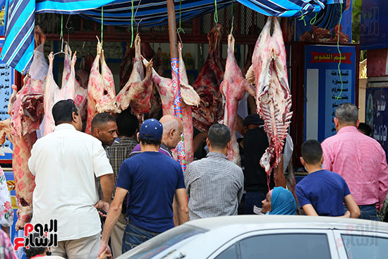 وزارة الزراعة تستعد لعيد الاضحى (2)