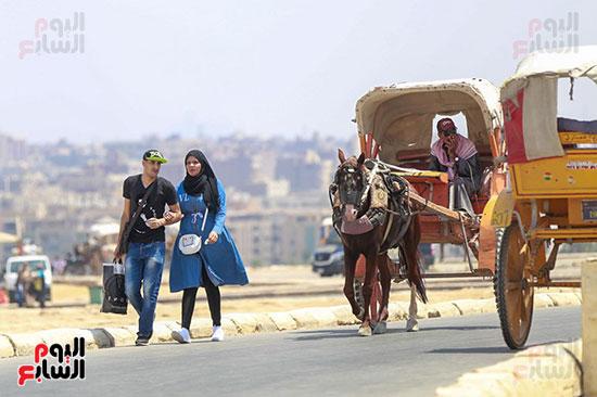 الاحتفال بالعيد فى منطقة الاهرامات