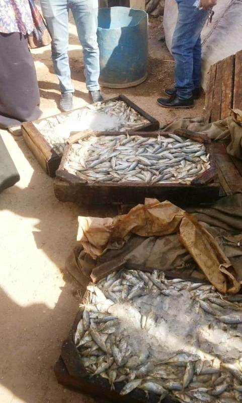 لضبط سوق اللحوم والأسماك ، تم  3
