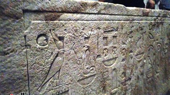 متحف كفر الشيخ (12)