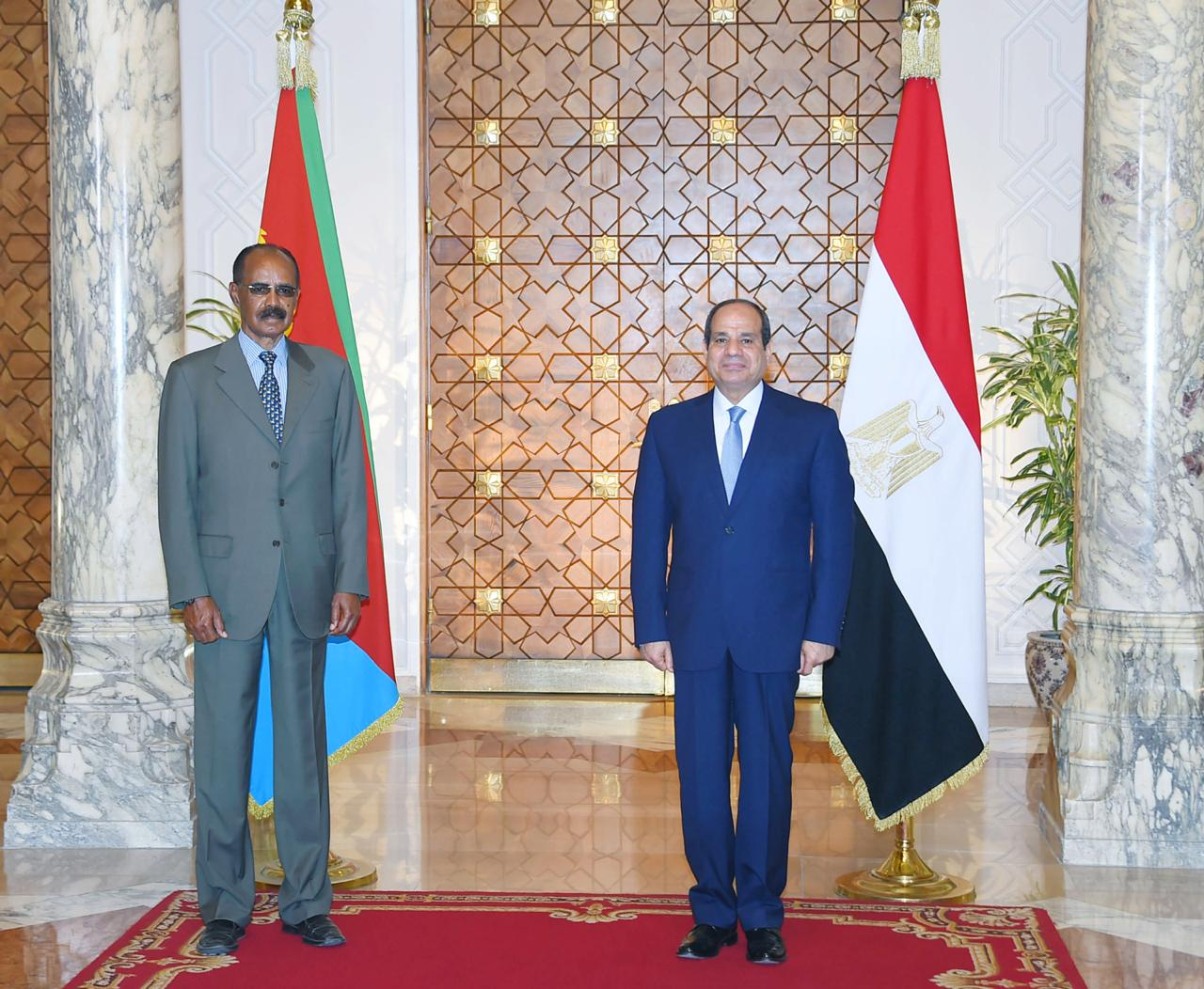 Sisi and his Eritrean counterpart (4)