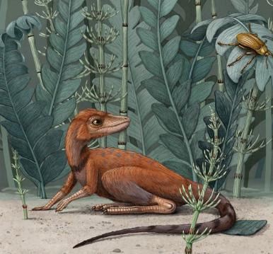 ديناصور صغير