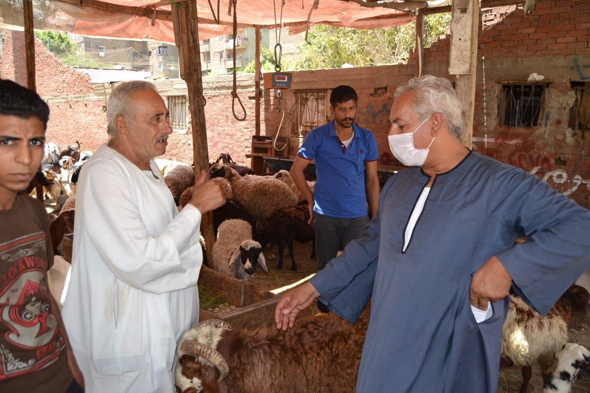 نقيب الفلاحين واسعار الماشية  (5)
