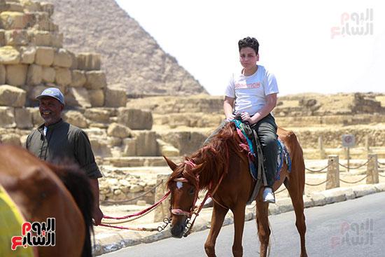 ركوب الخيل فى الأهرامات