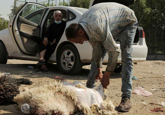 جزار يذبح خروفًا في سوق للماشية خلال احتفالات عيد الأضحى المبارك وسط انتشار مرض التاجي (COVID-19) في بغداد ، العراق