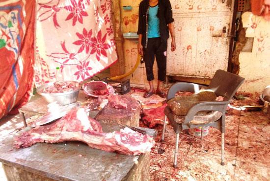 المحافظات تلاحق مخالفات الذبح فى عيد الأضحى (2)