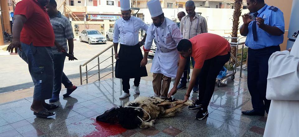 مستشفى العديسات للعزل الصحى تشهد ذبح خروف العيد (3)