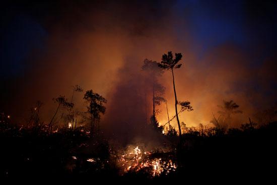 حرائق غابات الأمازون فى البرازيل