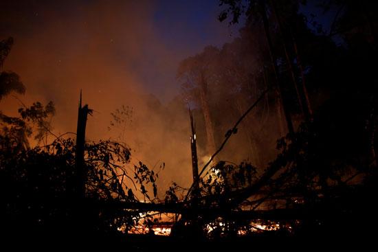 حرائق غابات الأمازون بالبرازيل