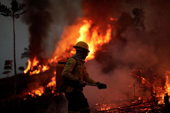 محاولة أحد الإطفائيين السيطرة على الحرائق