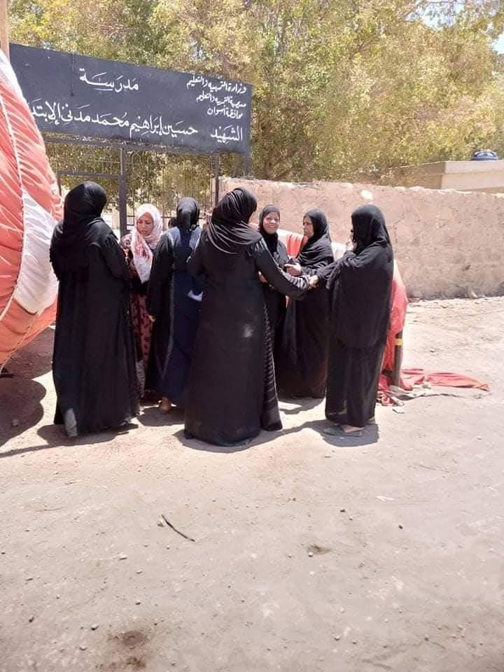 إقبال لسيدات قرى أسوان على اللجان (4)