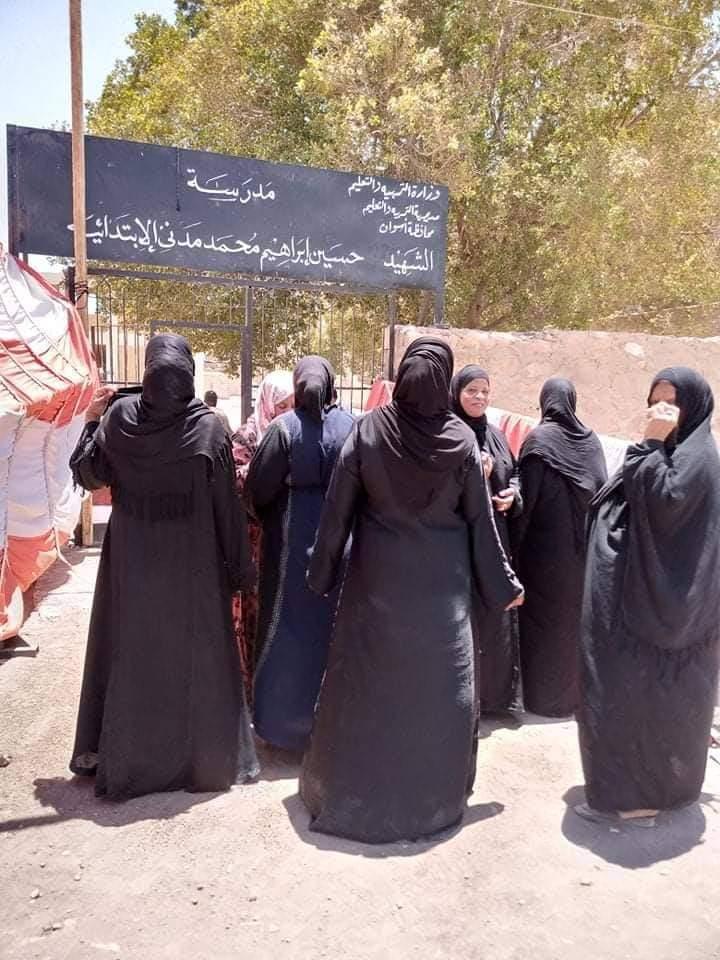 إقبال لسيدات قرى أسوان على اللجان (1)