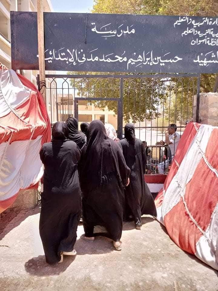 إقبال لسيدات قرى أسوان على اللجان (2)