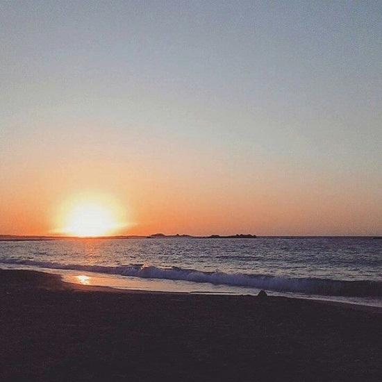 الشاطىء