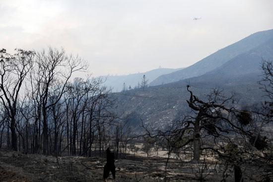 متوقع ظهور رطوبة في الجو تساعد في تحجيم الحريق
