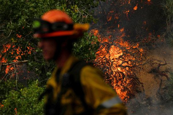 تم تعيين أكثر من 400 من رجال الإطفاء للسيطرة على الحريق