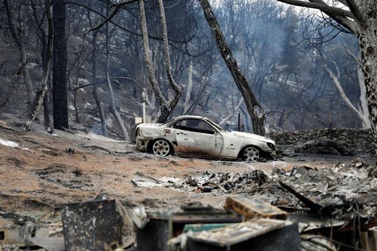 حرائق الغابات التى دمرت أكثر من 73 ألف فدان