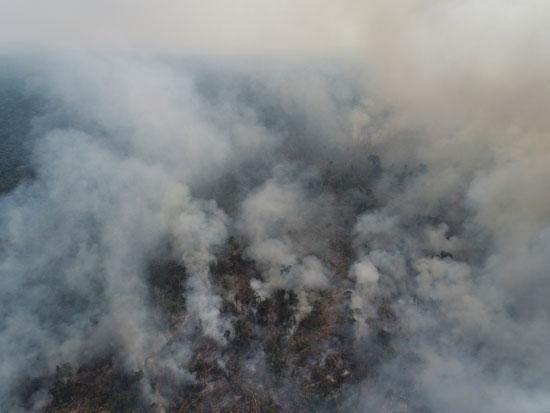 الدخان يتصاعد من غابات الامازون