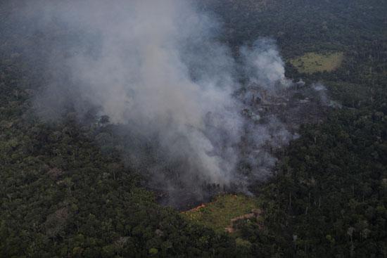 تصاعد الدخان من غابات الامازون