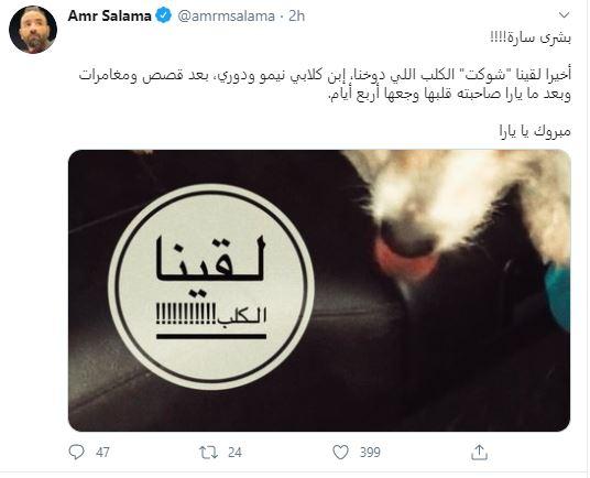 عمرو سلامة تويتر