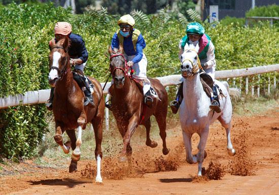 فرسان يتنافسون خلال سباق خيل في بيروت