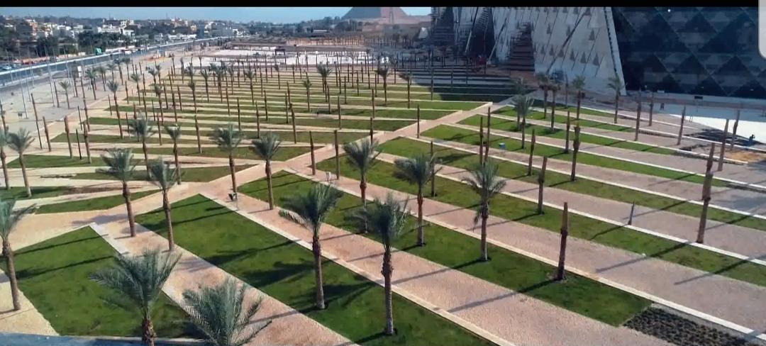 محيط المتحف المصرى الكبير (5)