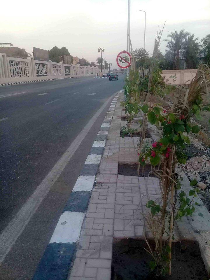 المسارات السياحية المؤدية إلى مقابر وادى الملوك والملكات ومعبد حتشبسوت (18)