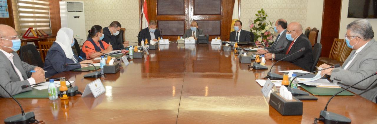 وزيرا قطاع الاعمال والتنمية المحلية (1)