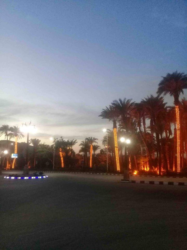 المسارات السياحية المؤدية إلى مقابر وادى الملوك والملكات ومعبد حتشبسوت (10)